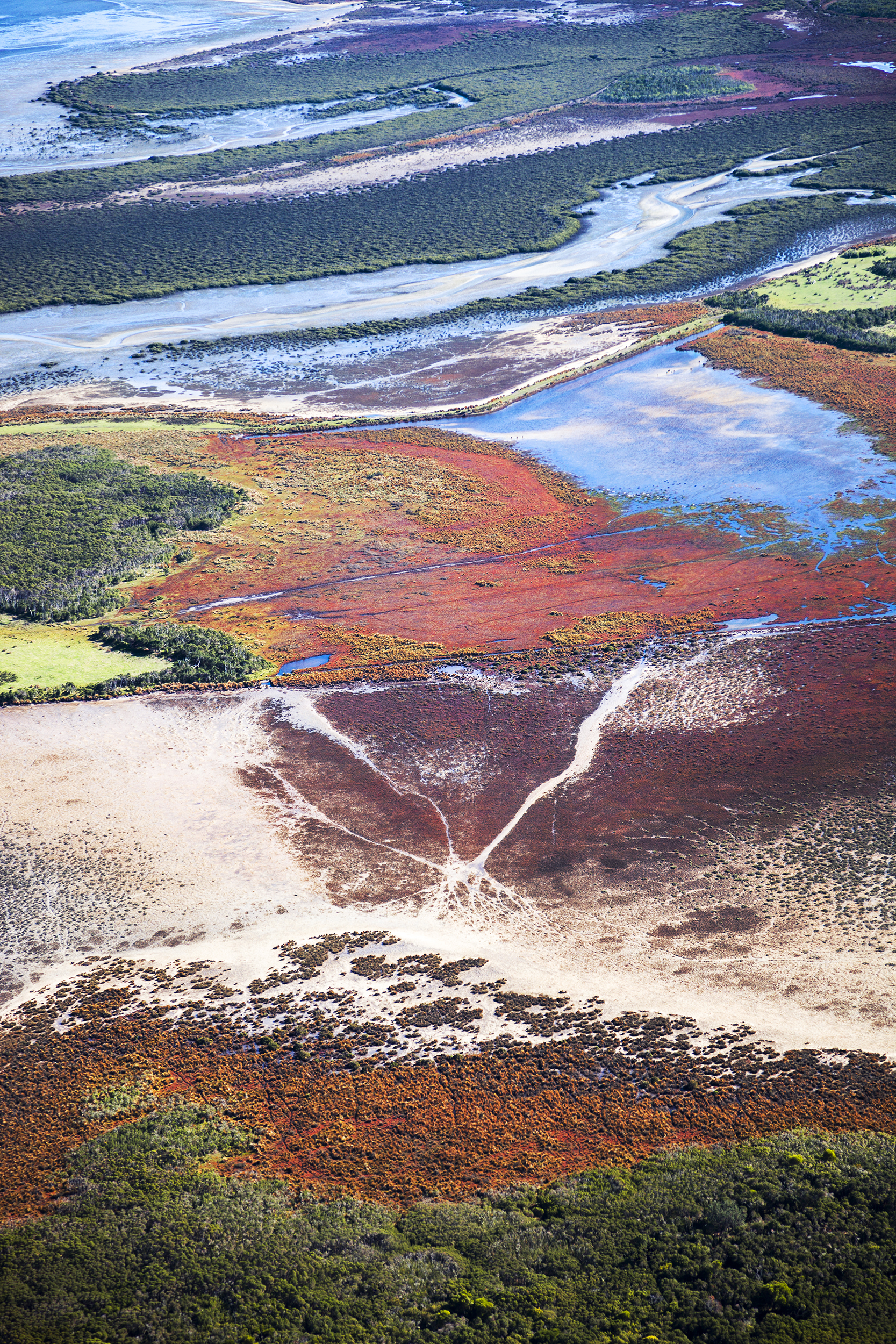 Terra Firma (2013)     Terra Firma  is an aerial photography series uncovering the harsh landscape of South East Victoria, Australia.