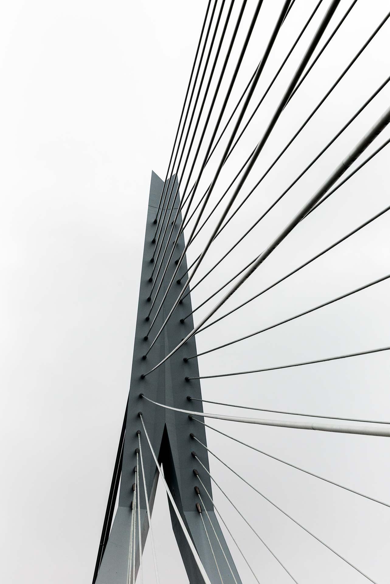 Tim_Allen_Rotterdam_7.jpg