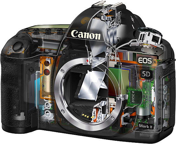Cross section of a Canon 5D Mark II. I own both models and there are both flawless.