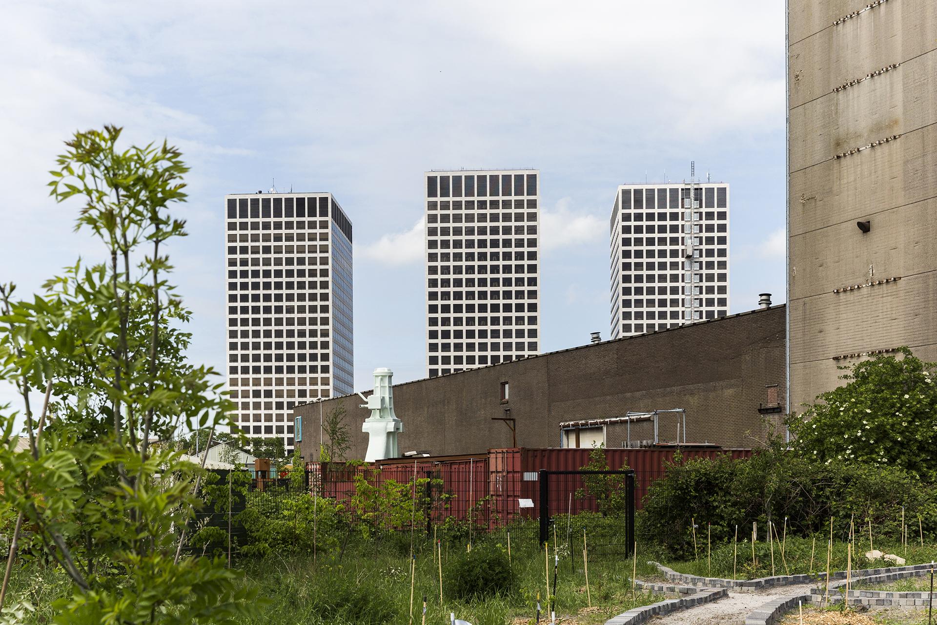 Tim_Allen_Rotterdam-02.jpg