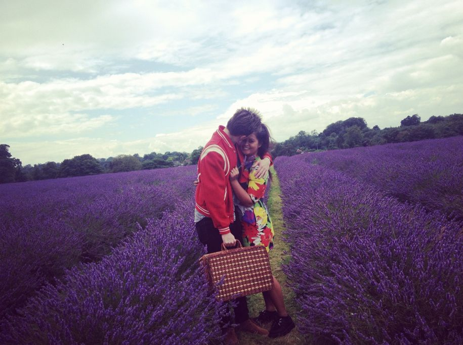 Lovebirds in lavender fields.