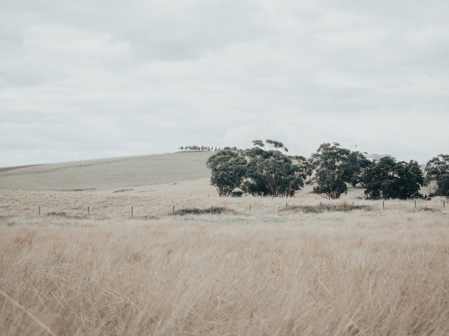 TAKING A BREATHER IN THE YARRA VALLEY, VIC -