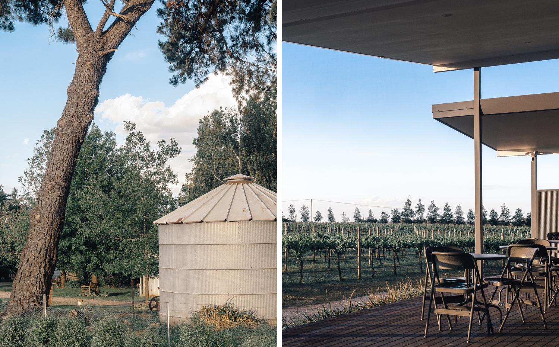 Travel_Australia_Guide_Weekend_Destination_Hotel_Airbnb_Things To Do_Pauline Morrissey_NSW_Orange_Winery_Rowlee Wines Vineyard.jpg