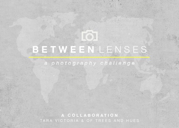 BetweenLenses700x500 (1).png