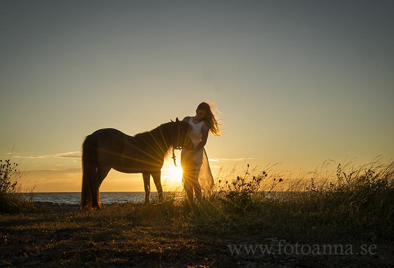 fotografering med häst gotland. fotograf Anna Zetterström