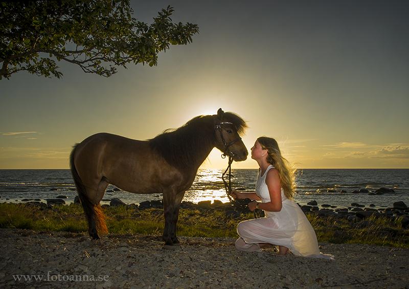 fotografering med häst. Själsö Gotland