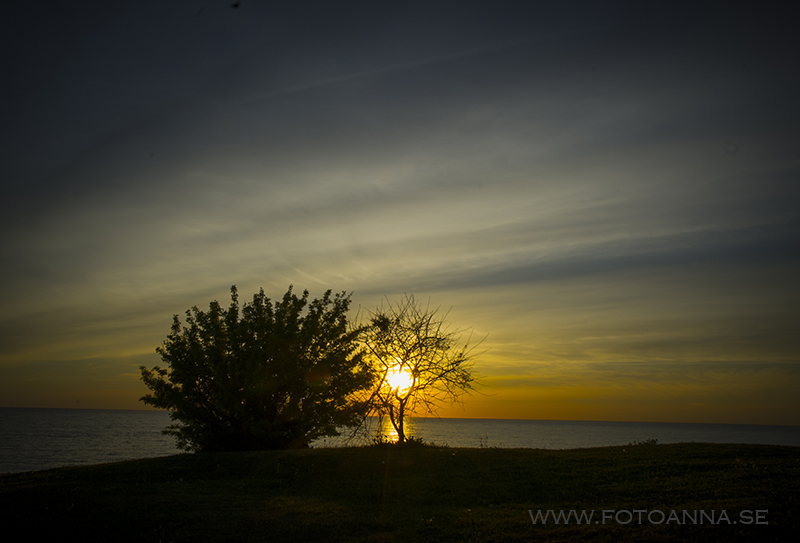 DSCfotograf FotoAnna Visby Gotland