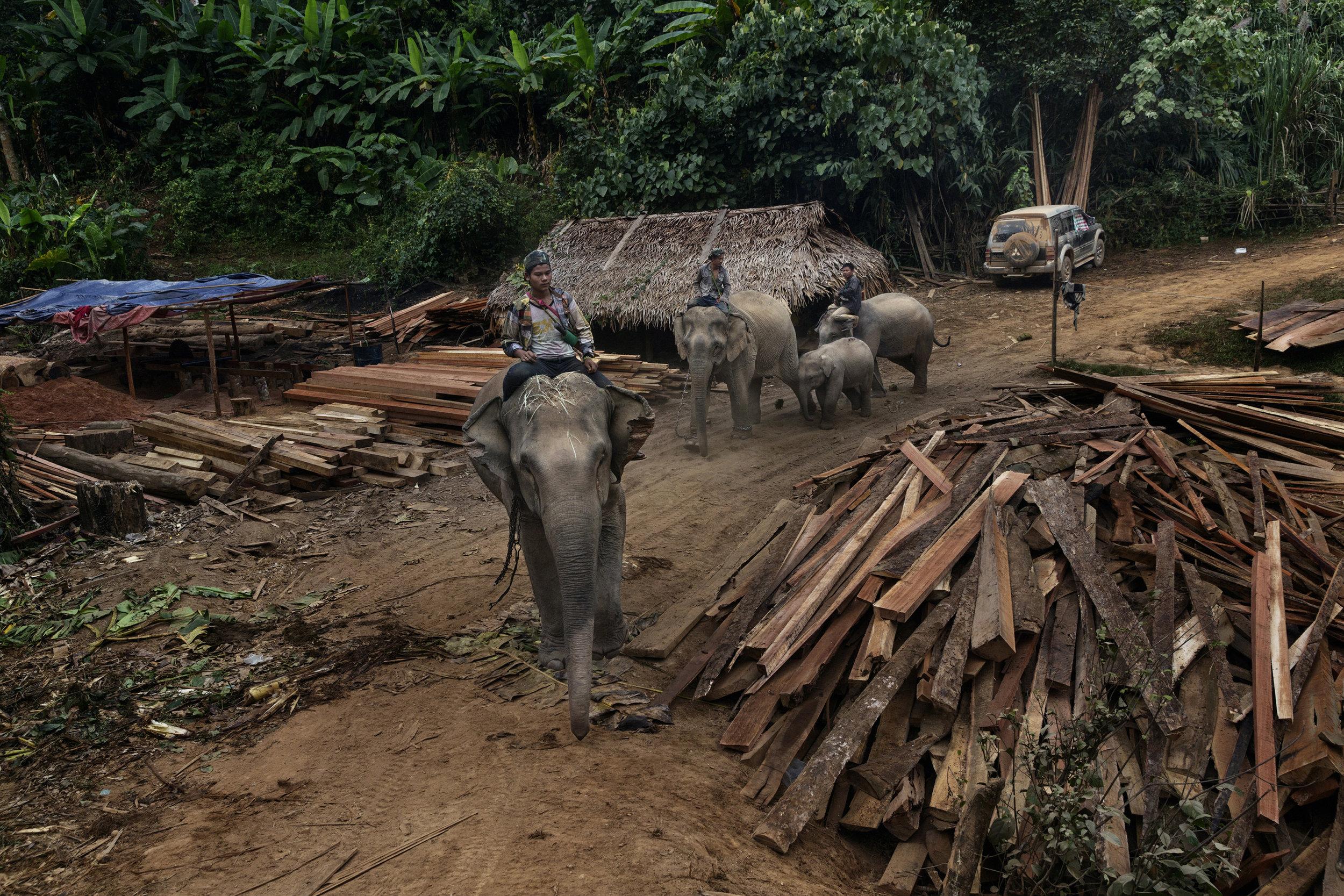 15_14_Burma WUA.jpg