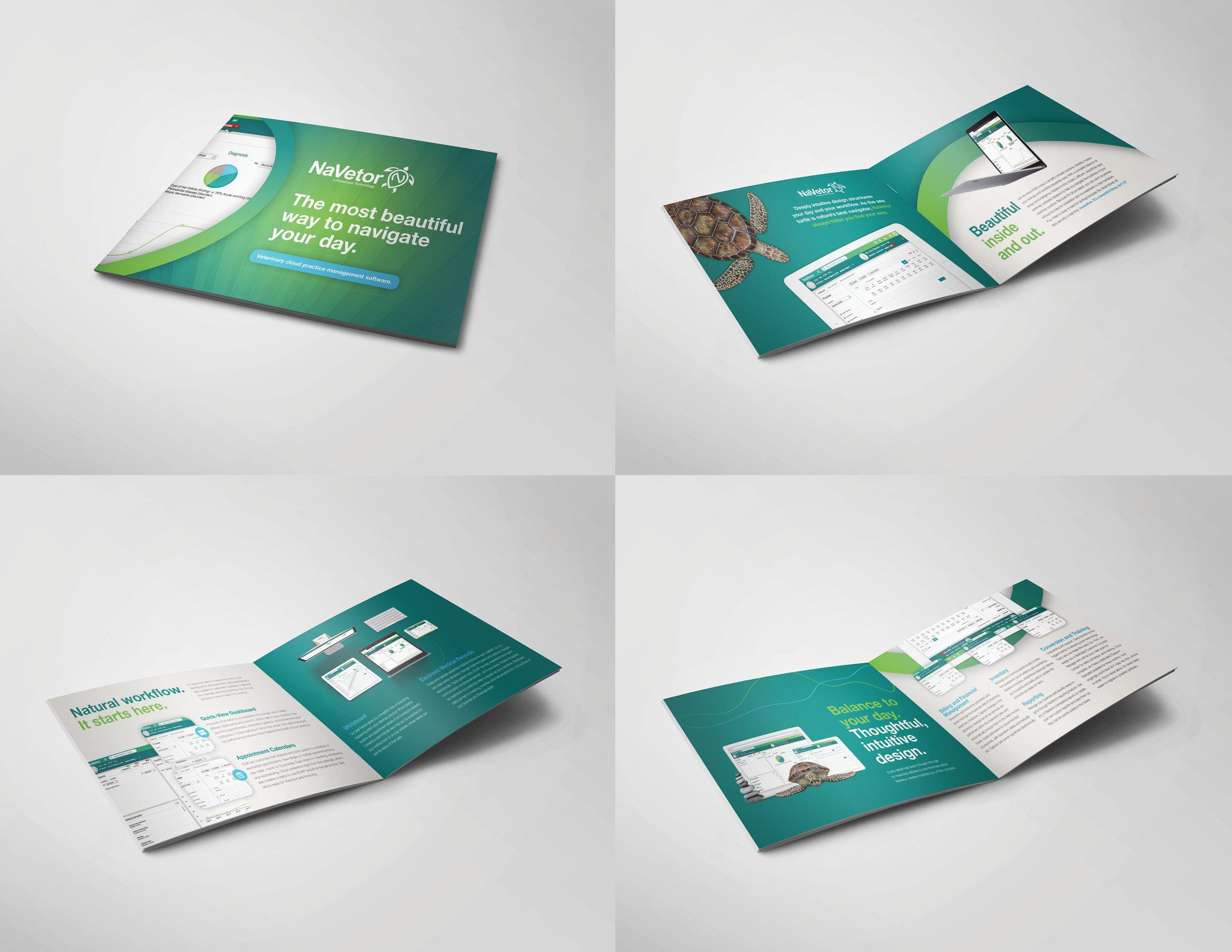 NaVetor Marketing Brochure Design
