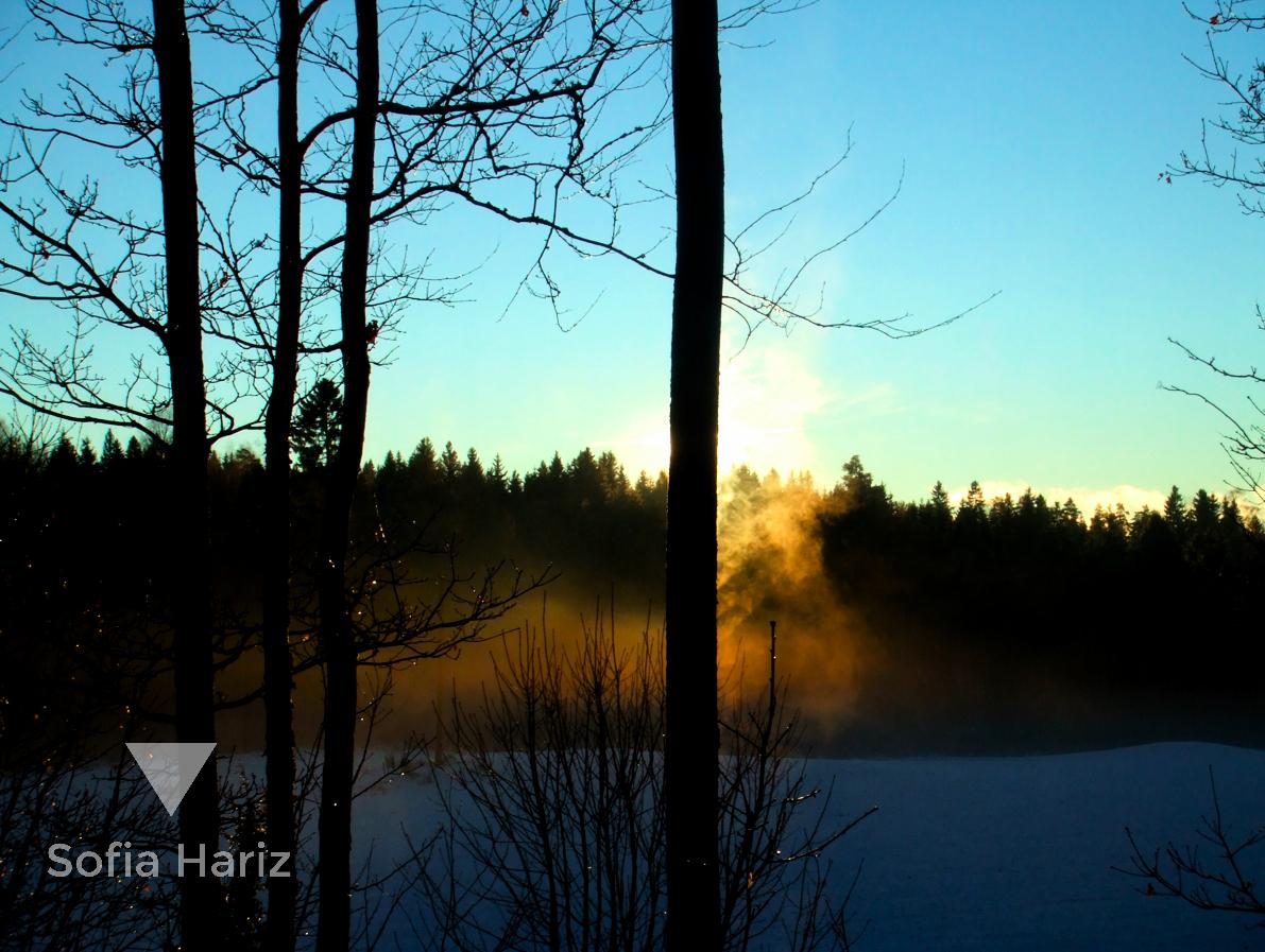 Winter - Pepperstad, Norway