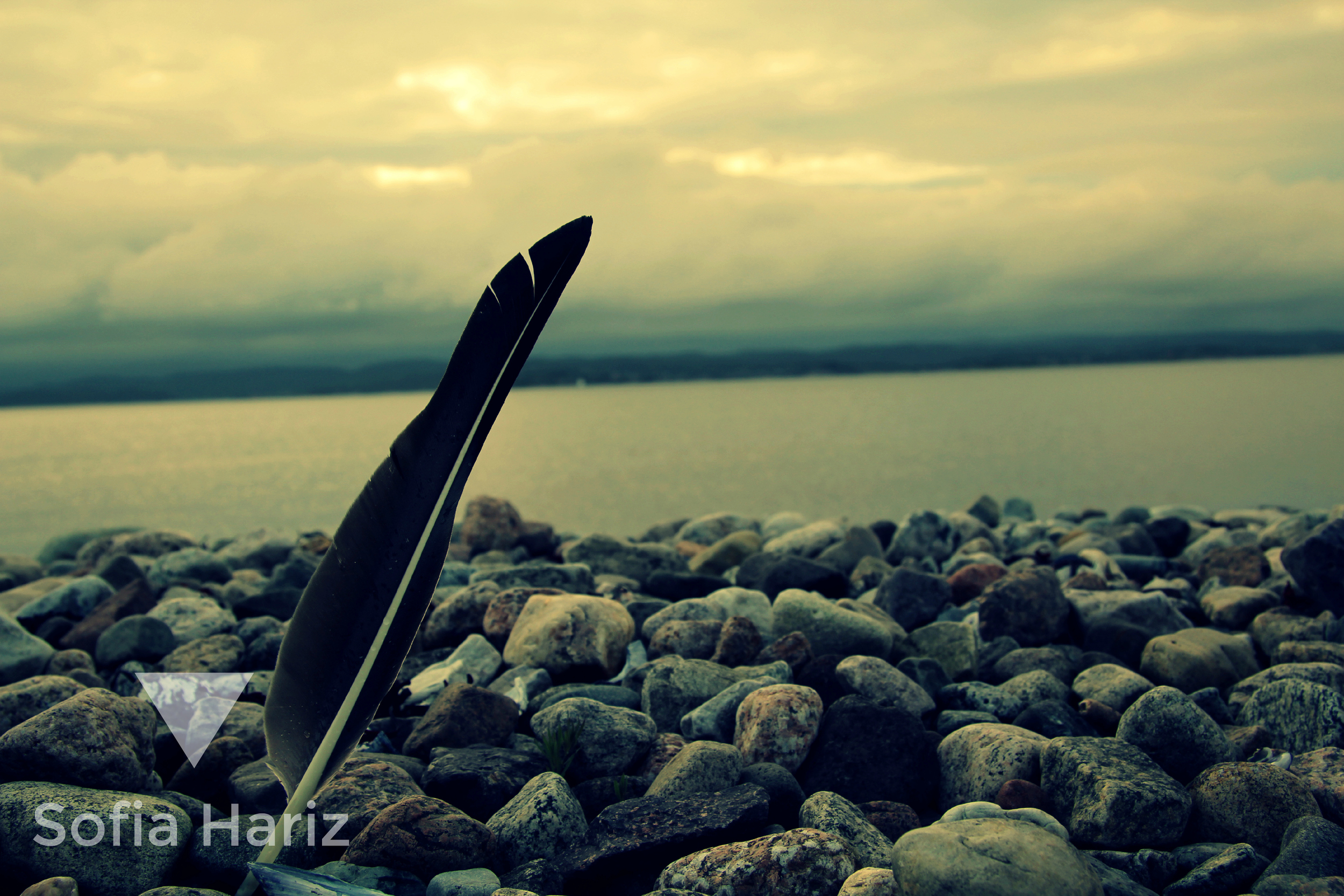 Feather - Sandefjord, Norway