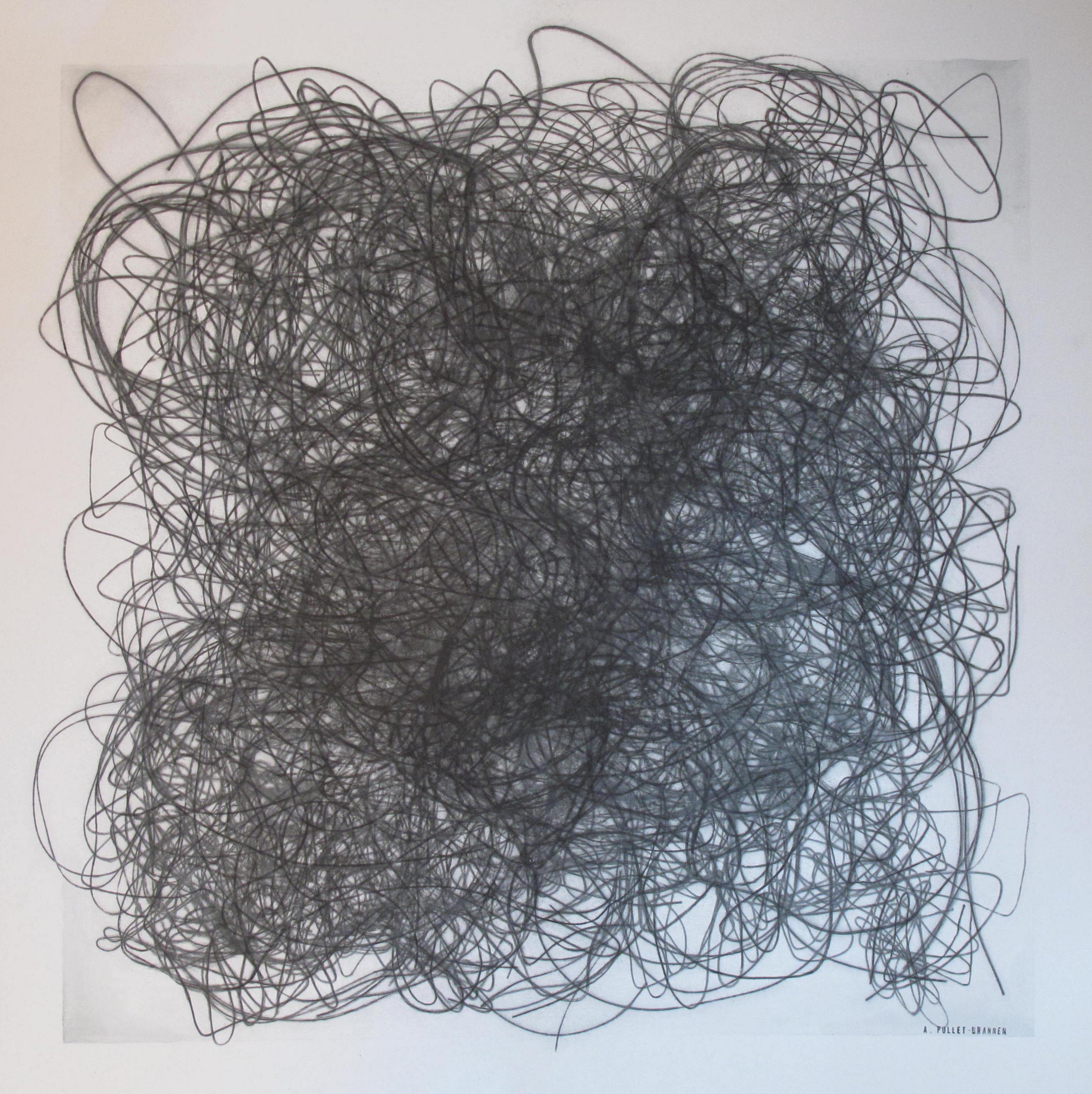 "Arianne Pollet-Brannen,  Perma-Hand Silk.  Image transfer, graphite and ink on paper. 18"" x 18""."