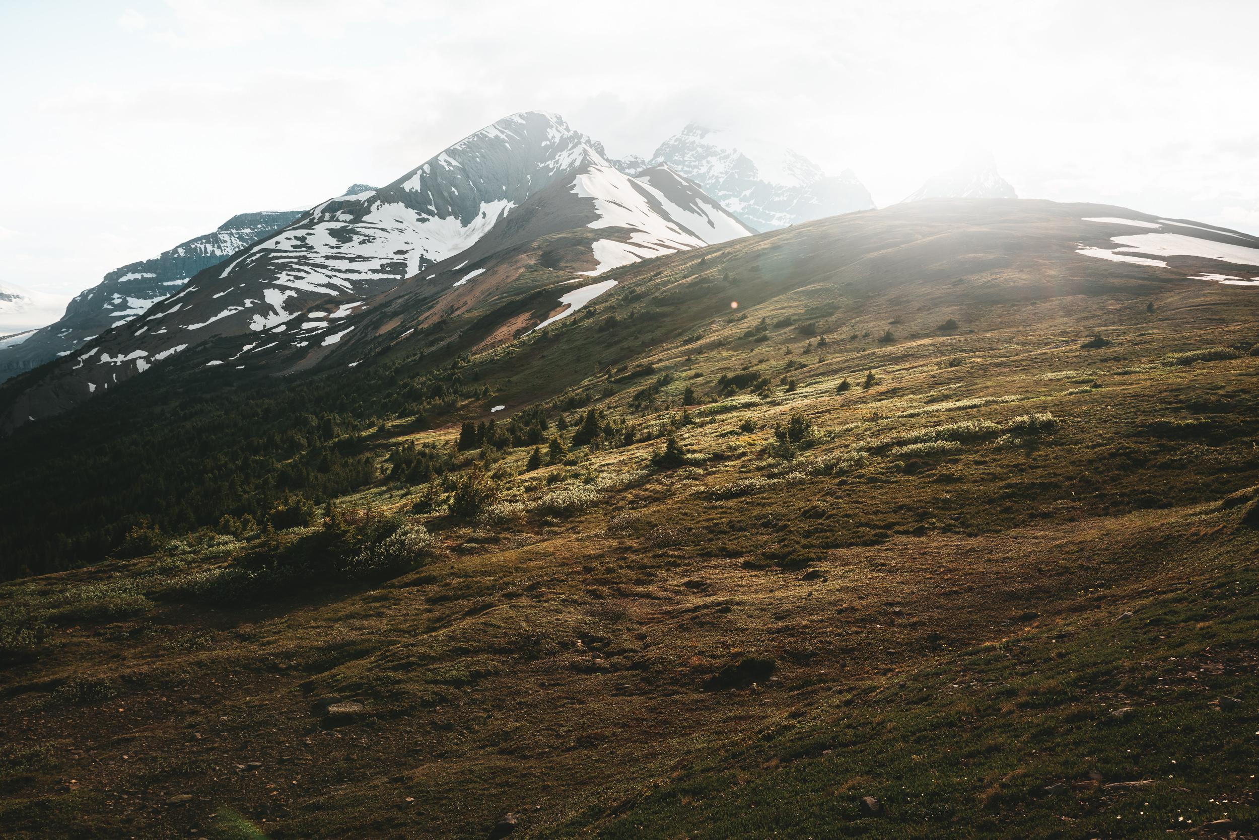 Mount Athabasca & Hilda Peak