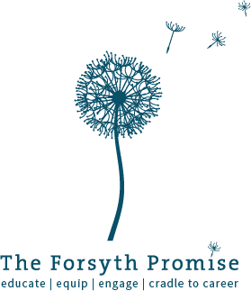 forsyth promise.png