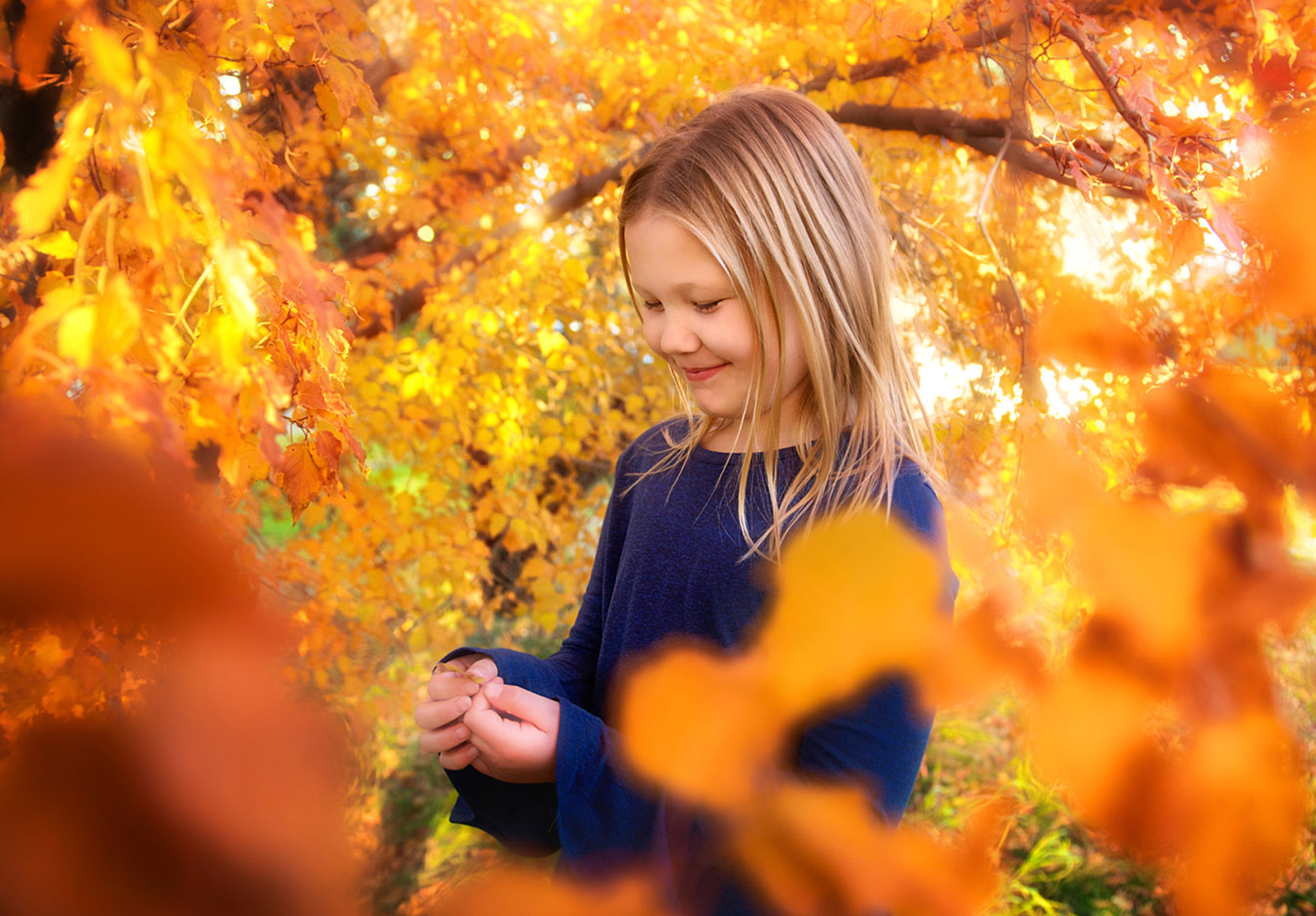 you-are-my-sunshine-fall-sessions-regina-free-lense-photo-01.jpg