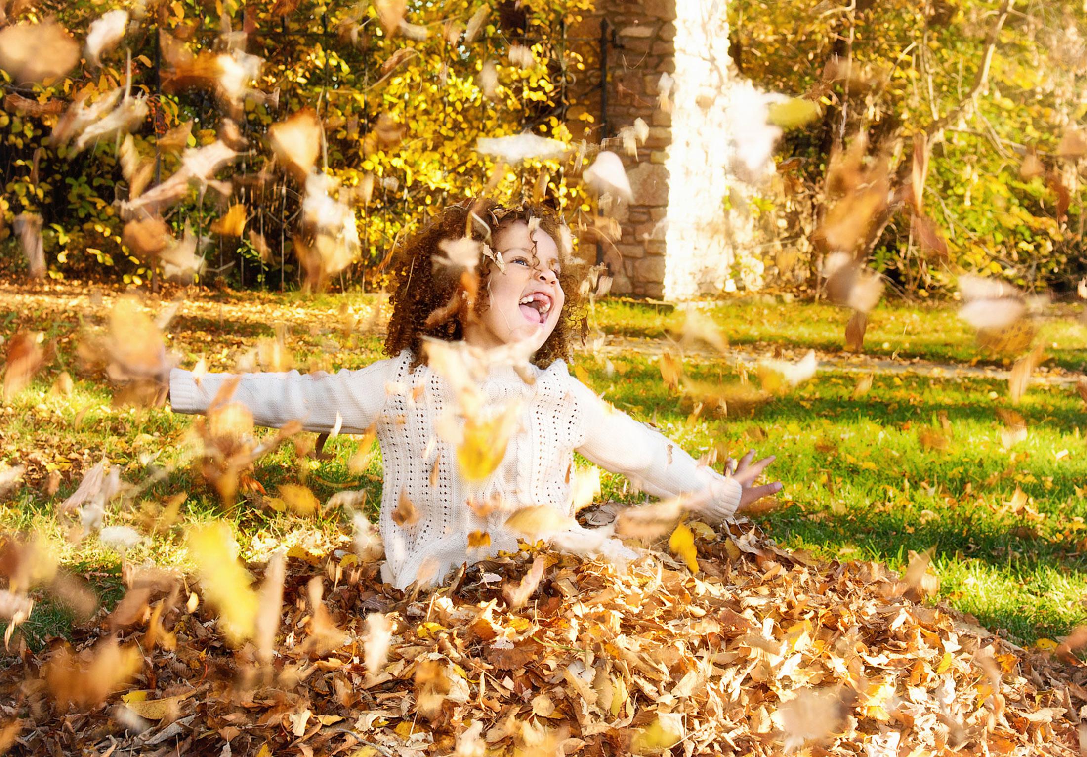 you-are-my-sunshine-fall-sessions-regina-free-lense-photo-34.jpg