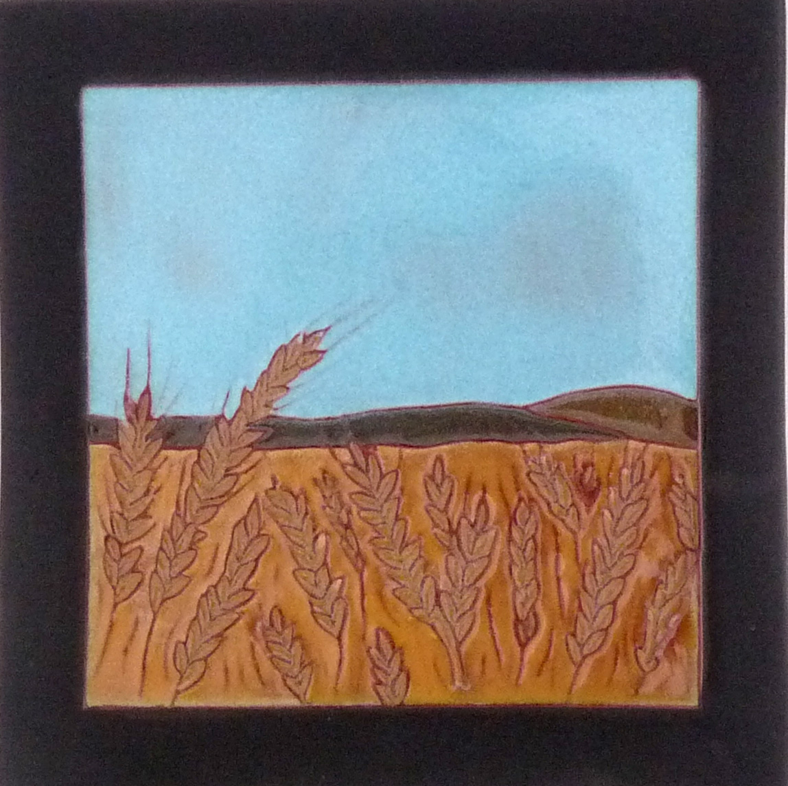 Barley field.jpg