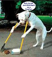 dog_scooping_poop-410x450.jpg