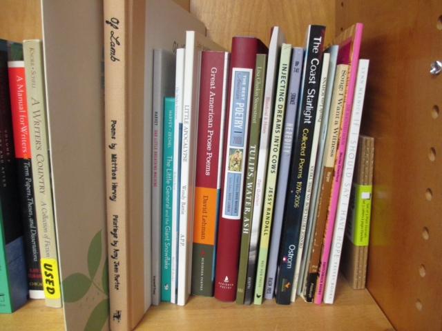 library12libraryshelf.JPG