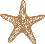stardots_sand_small.jpg