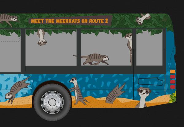 StarfishWebsite2017_Meerkats_03.jpg