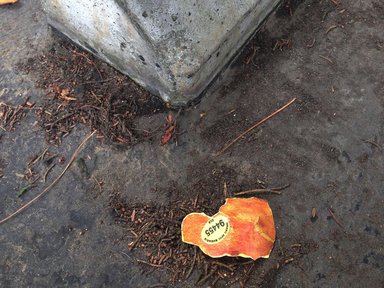 Paper Orange Peel, 2015  A sculpture for littering   DOWNLOAD HERE!