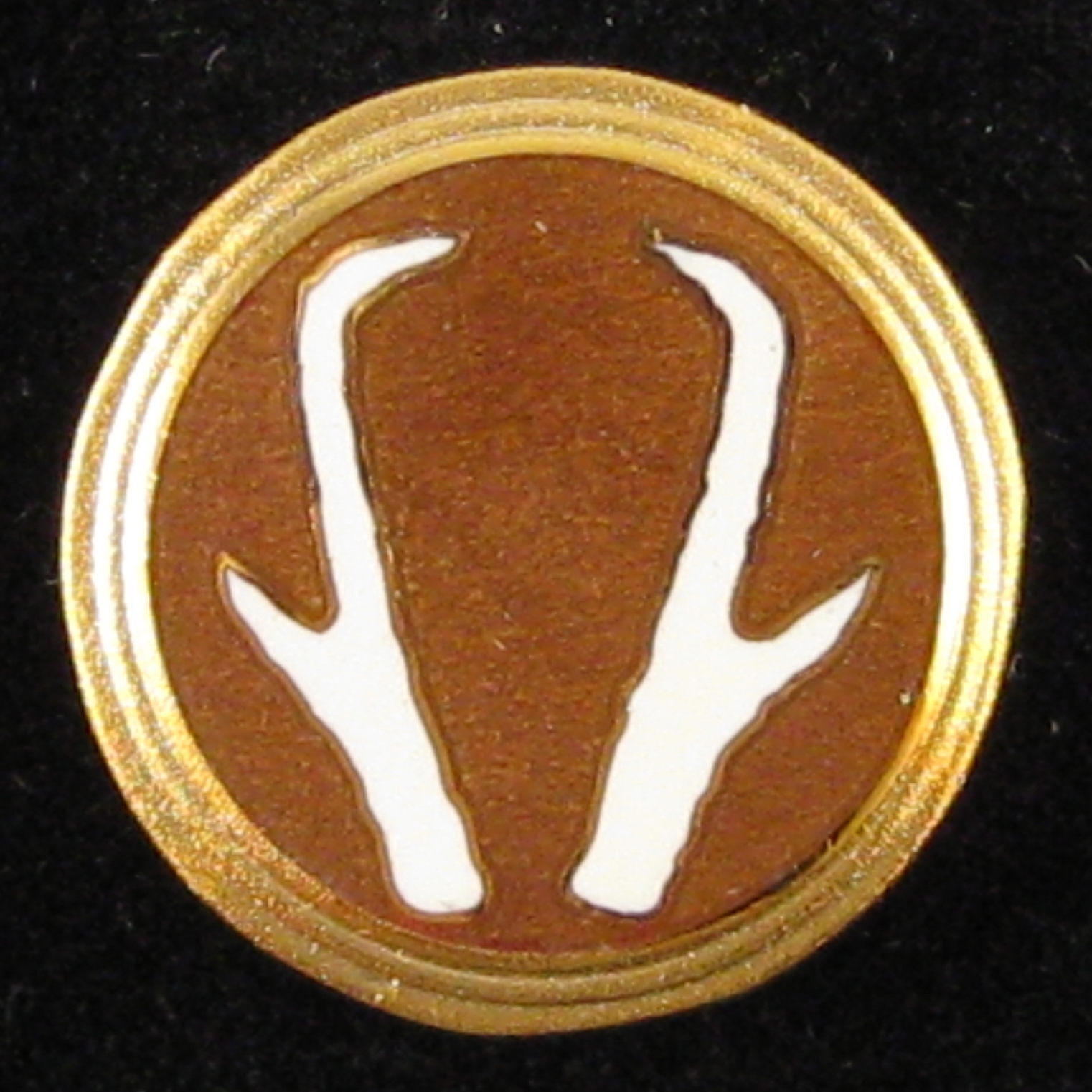 Pronghorn - Front