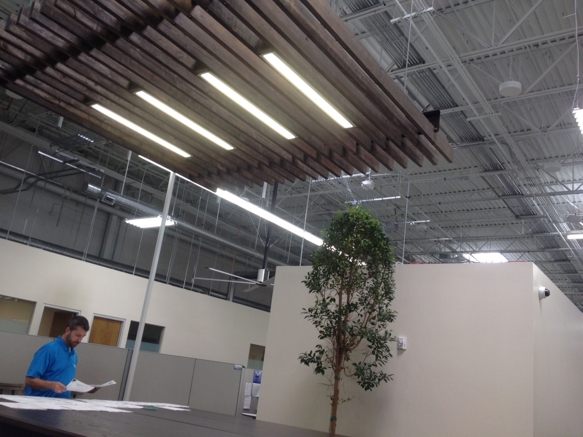 Leslie's Swimming Pool Supplies' building features community gathering spaces, such as this large table in a work neighborhood, ficus trees, high ceilings, exposed duct work, huge fans and a wooden trellis more typically seen at backyard pools. (Photo: Laurie Merrill/The Arizona Republic)