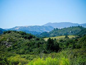 Mayacamas Ranch Photo Gallery