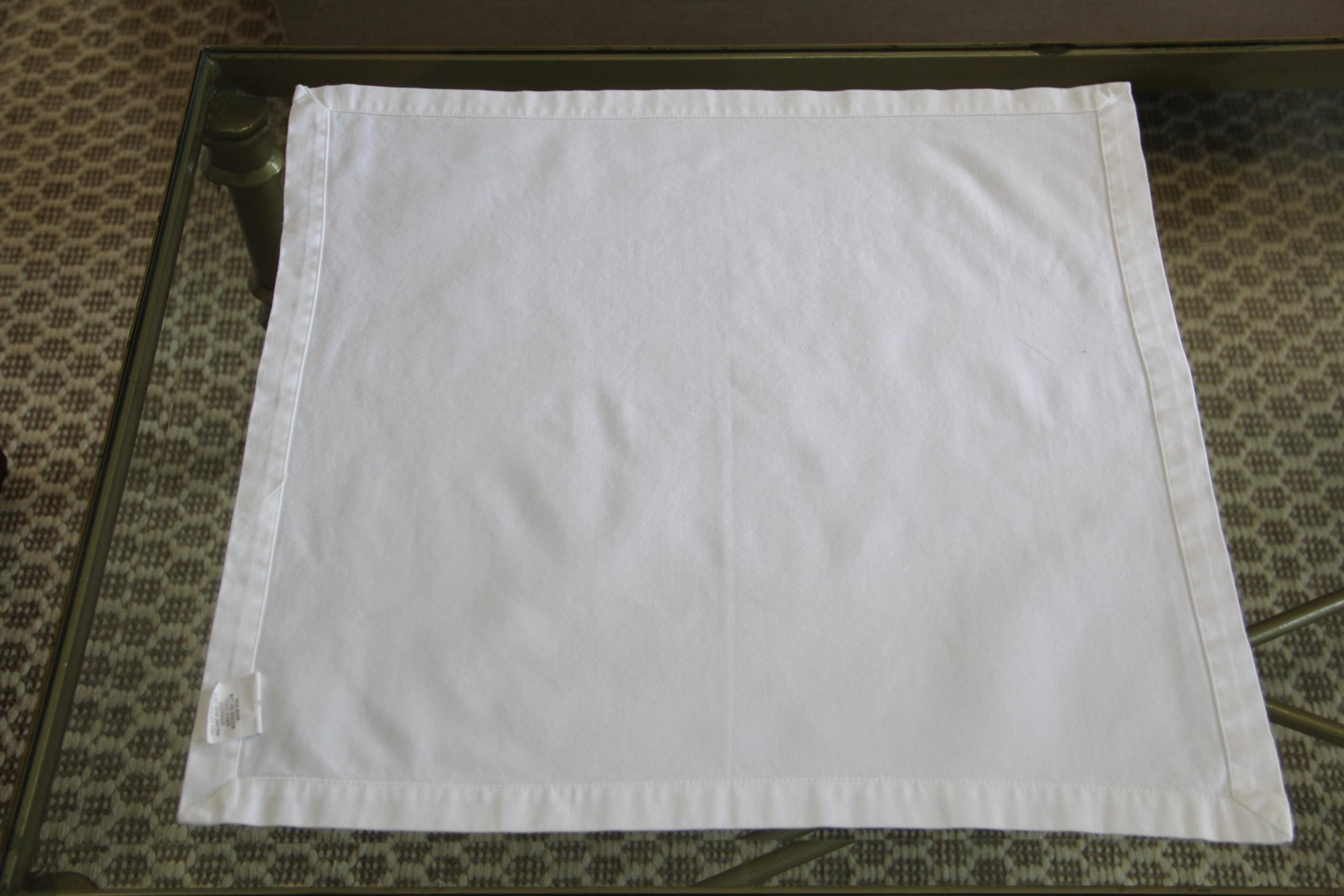 Napkin Fold 1a.JPG