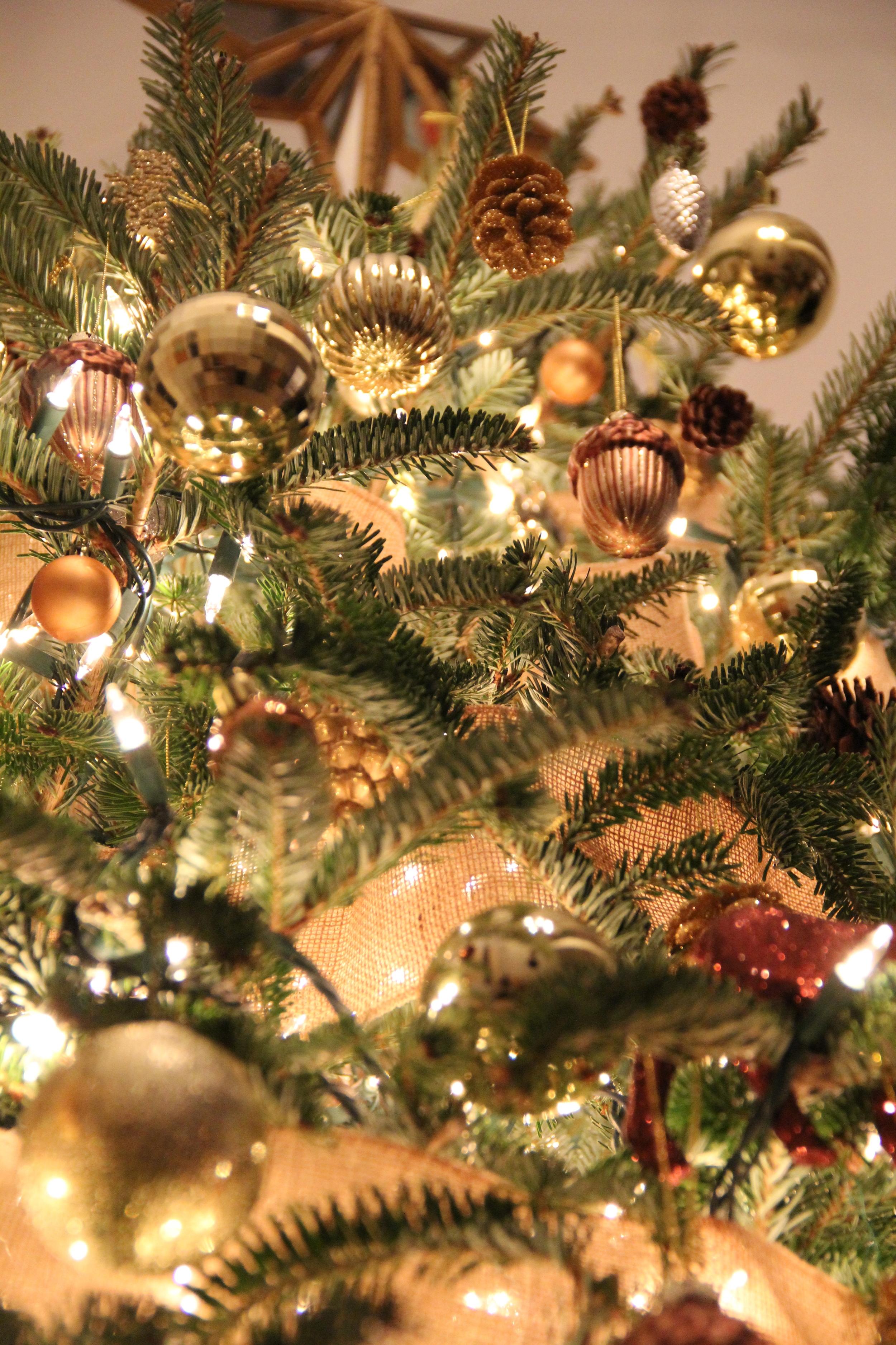 Redefining Domestics Christmas Tree 1.jpg