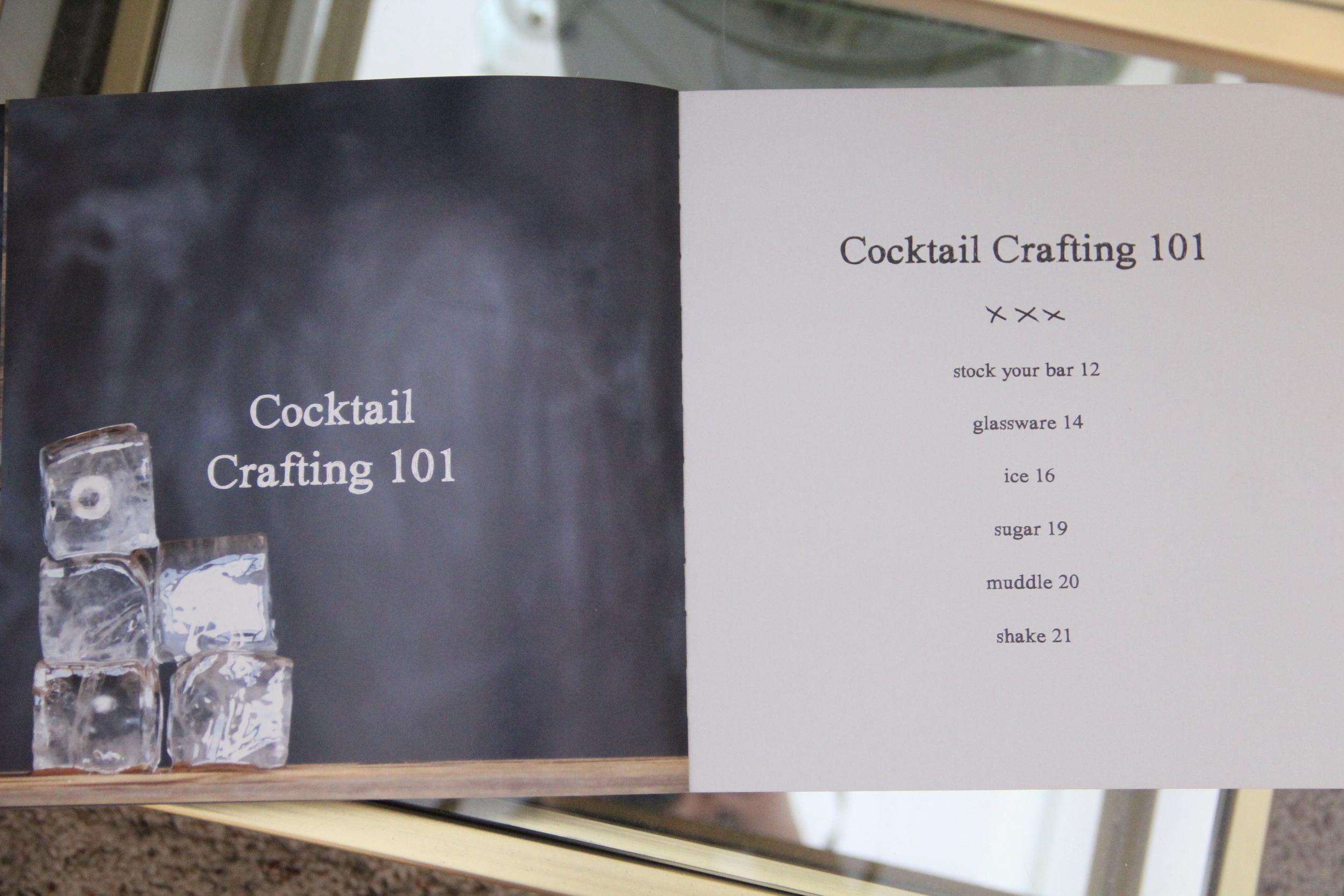 Shake Crafting Cocktails 101.JPG