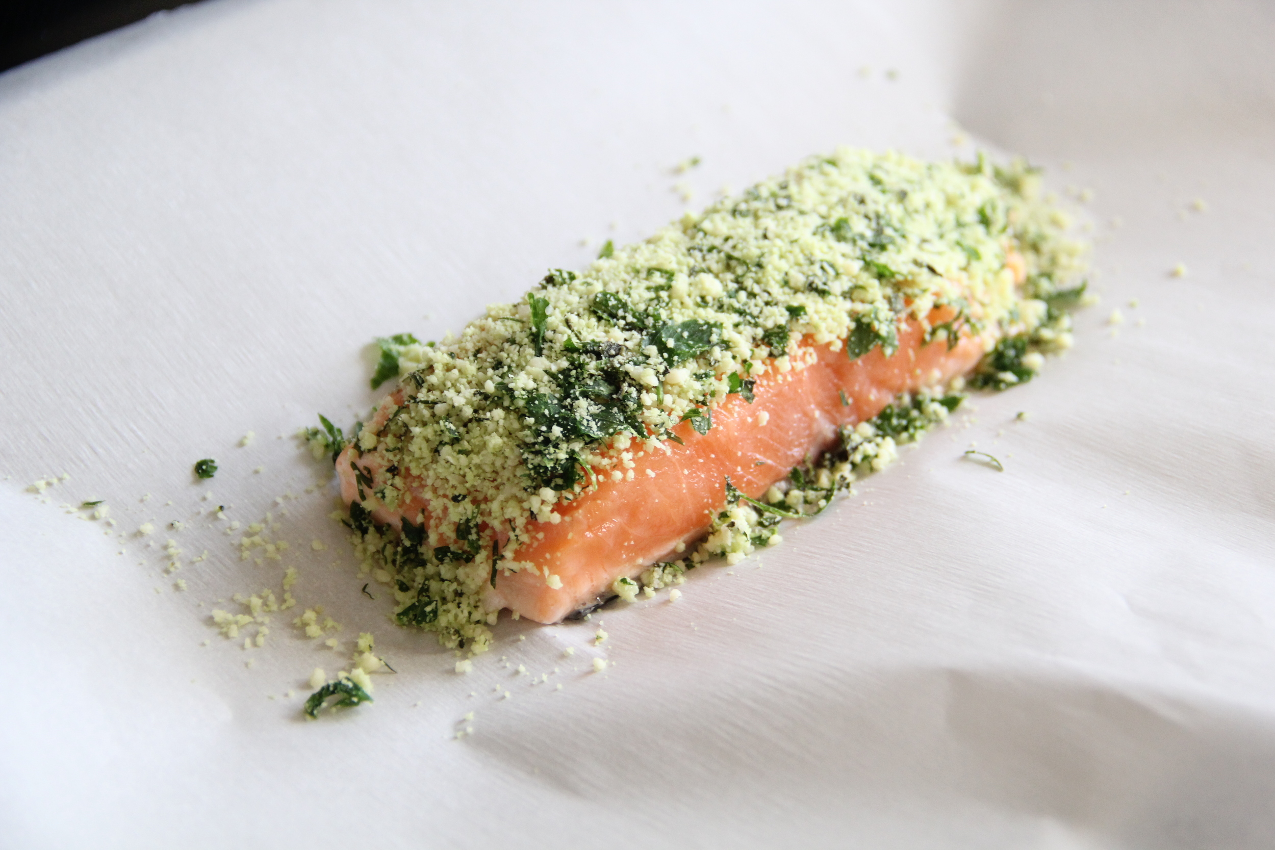 Raw Salmon Filet.JPG