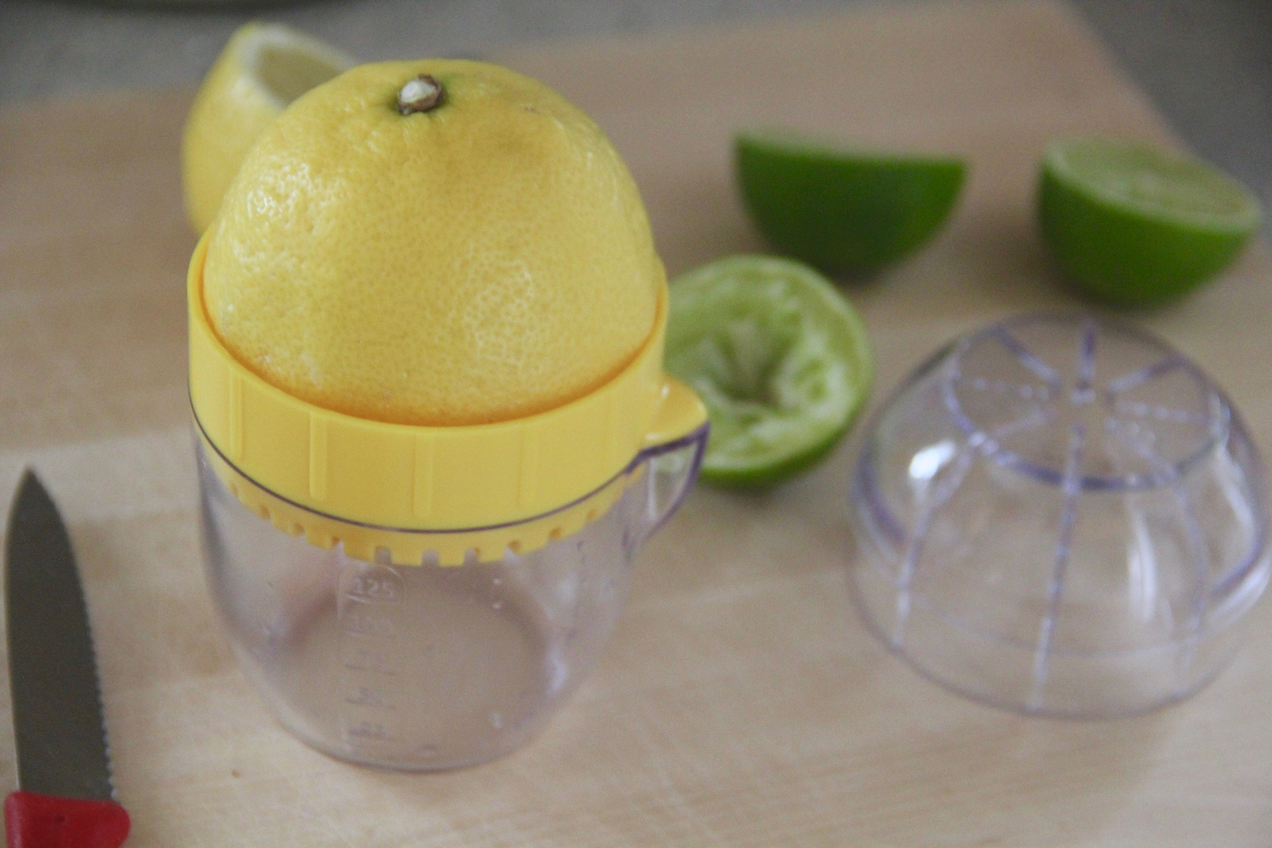 Mini Citrus Juicer 2.jpg