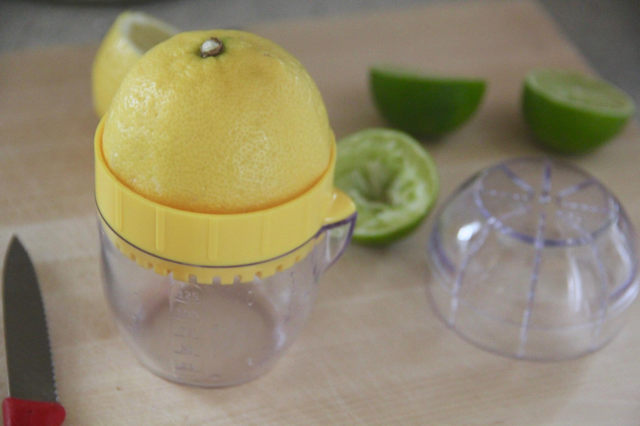 Mini Citrus Juicer 2.jpg