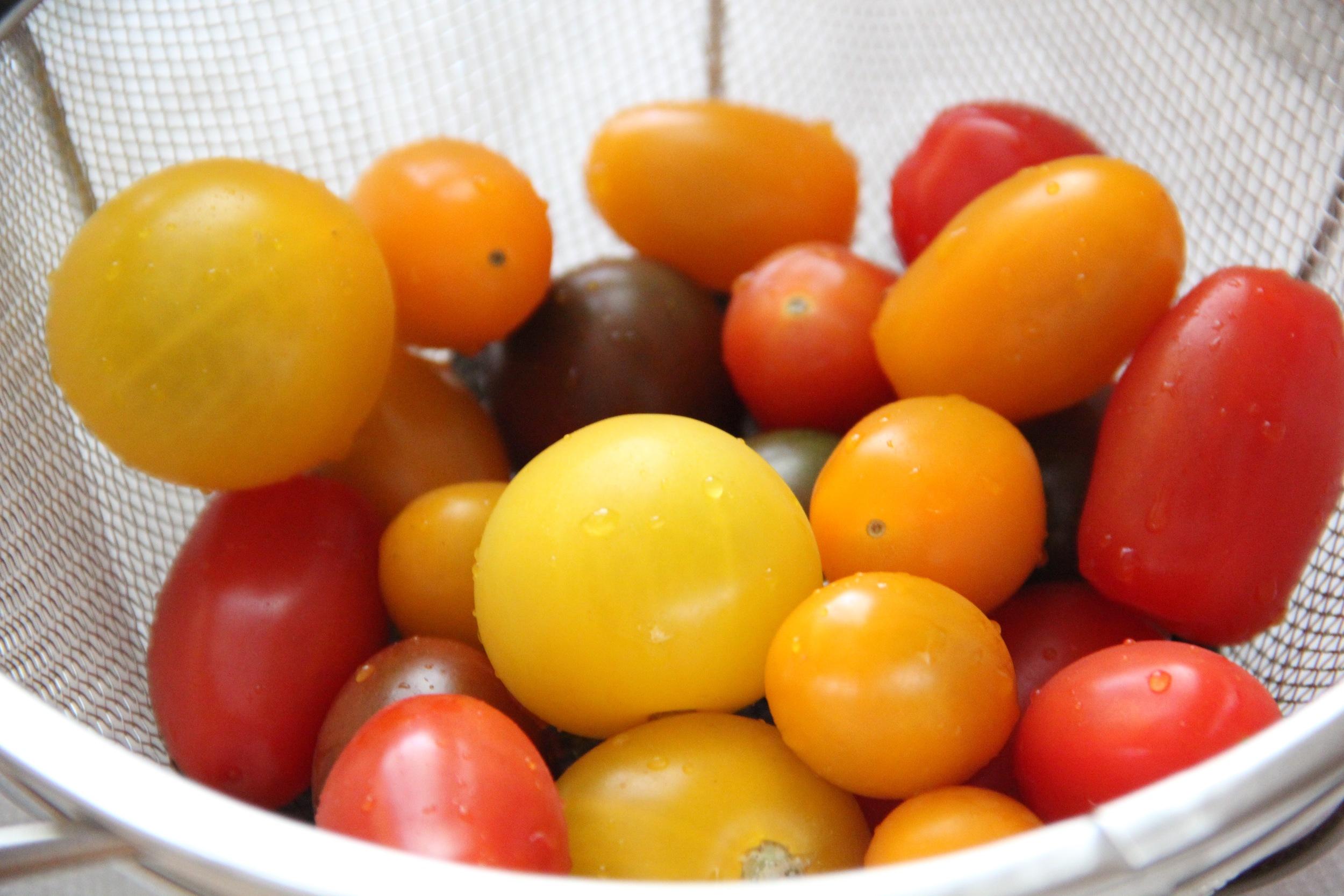 Heirloom Tomatoes.jpg