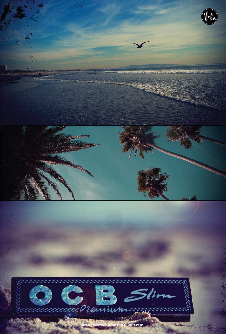 "POSTER: BEACH TRIPTYCH 6x9"""