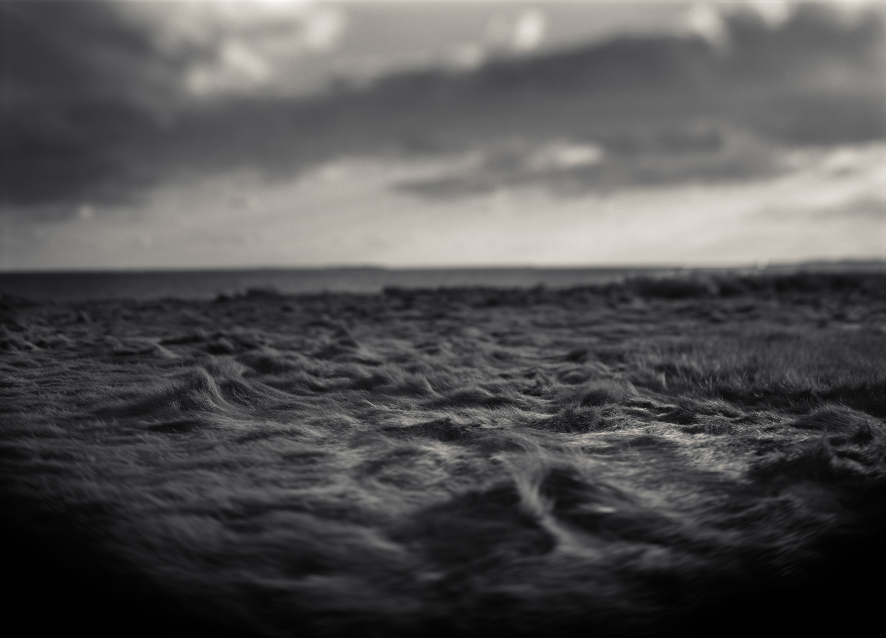 Where There Is No Boat, I Will Put a Boat , Platinum/Palladium, Ron Cowie