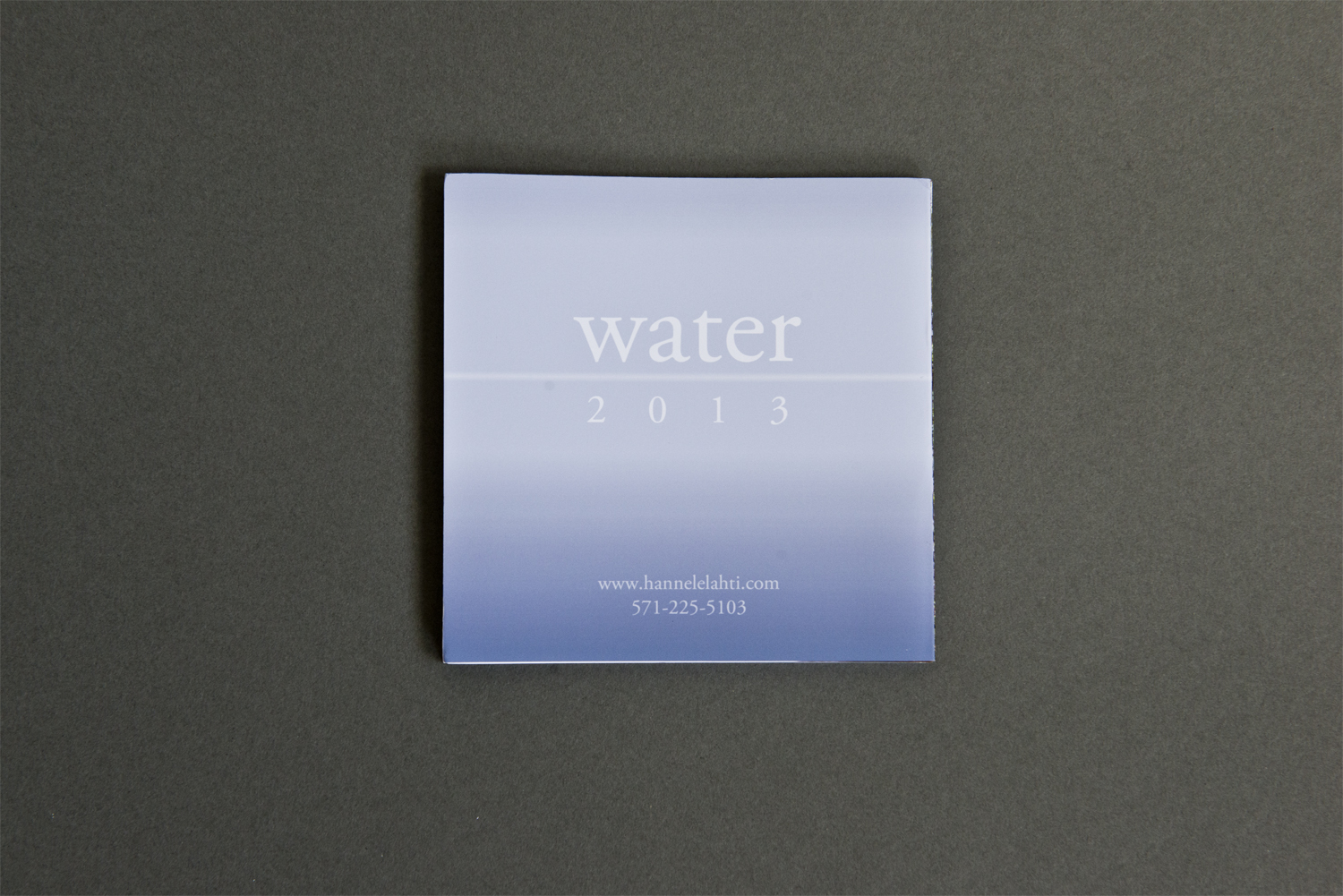 This beautiful accordion book,  Water , from photographer Hannele Lahti was submitted to Promo of the Week. We liked that the book arrived in clear plastic, allowing us to see immediately what might be inside.