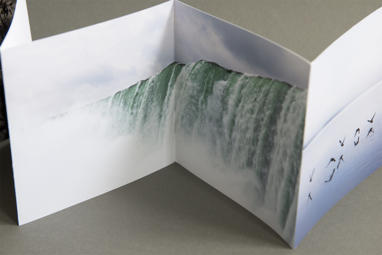 The small square book is an edition of 50 and features photographs from an ongoing project. The uncoated paper has a rich texture that blends well with the subject matter. The contact information is easy to find, and the small size (for a book) makes this promo material easy to carry around during review events.