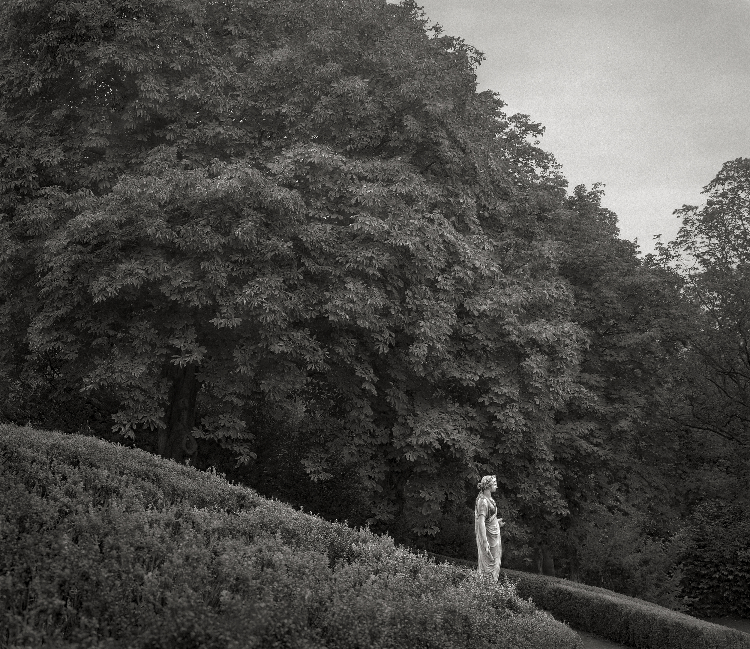 Hillside, Waddeson Manor   Beth Dow  7.5 x 9, Edition of 5, signed and numbered Archival inkjet print from platinum original