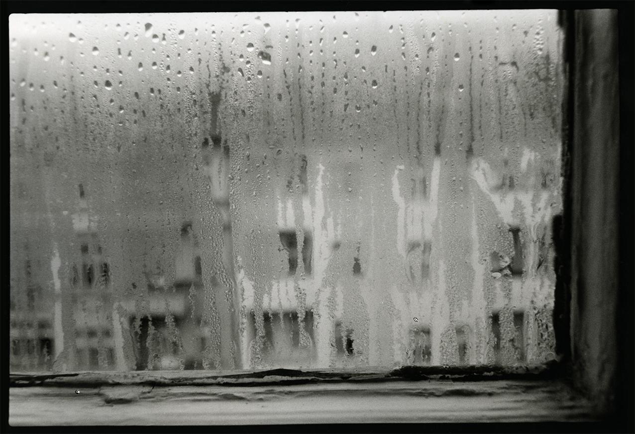 Regenfenster , Charlotte Thömmes