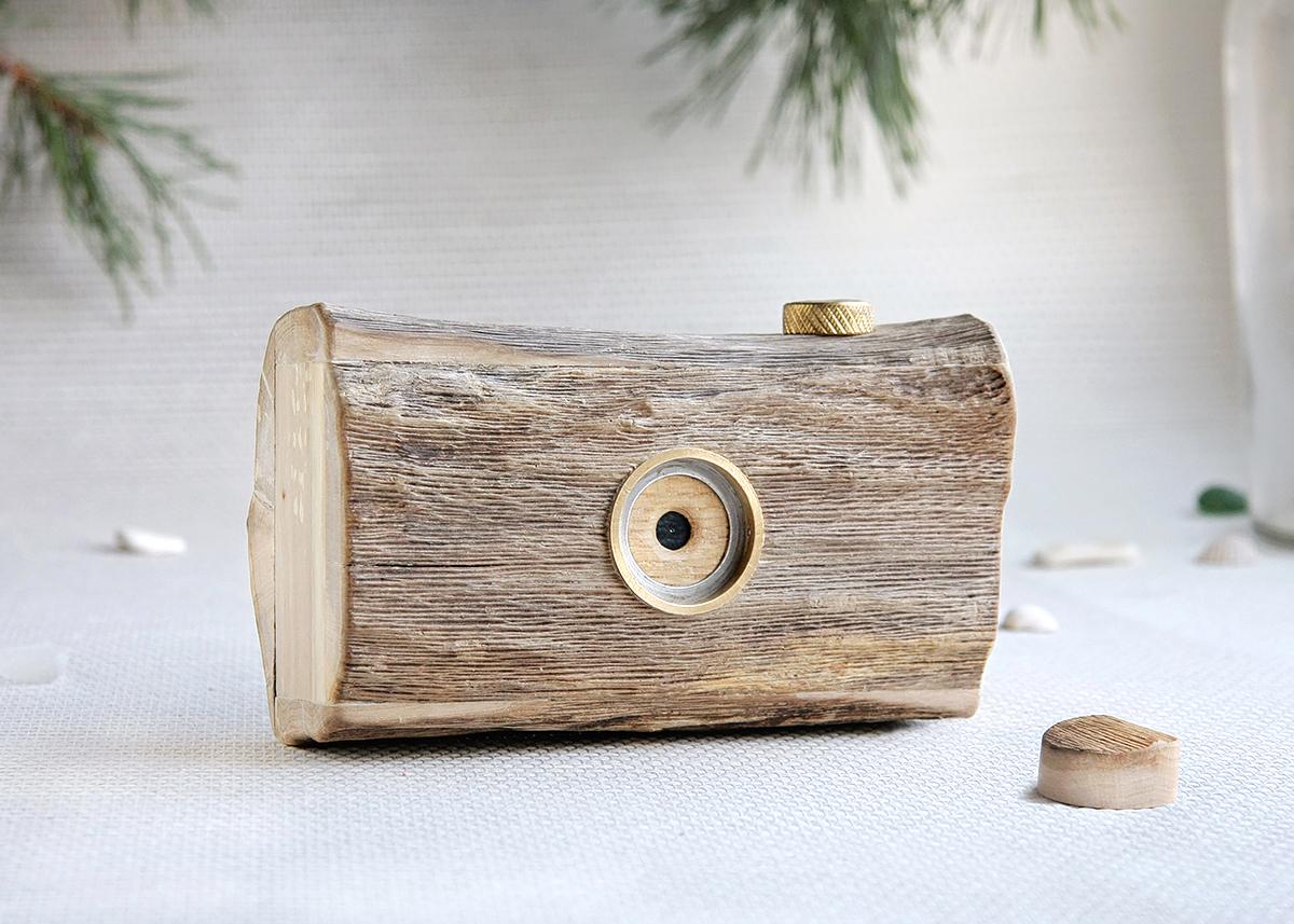 Pinhole camera made from driftwood