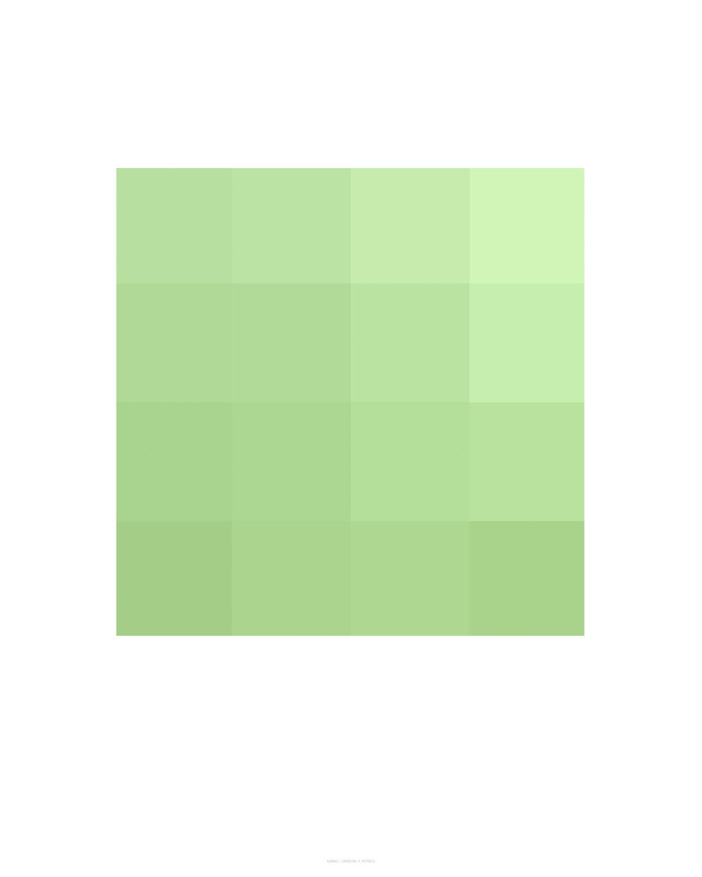 Grass No. 2, 16 Pixels