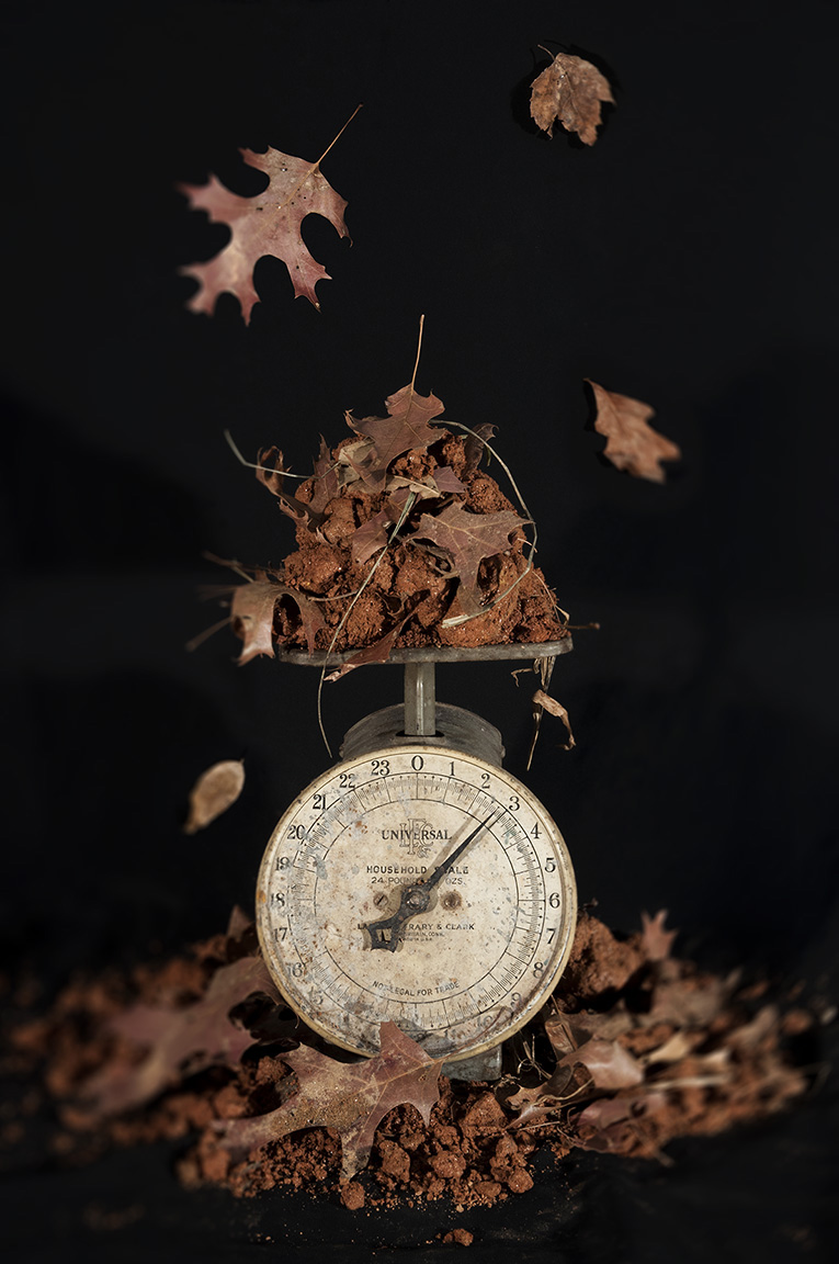 The Weight of Seasons, from series, Five Meditations on the Nature of Gravity and Weightlessness