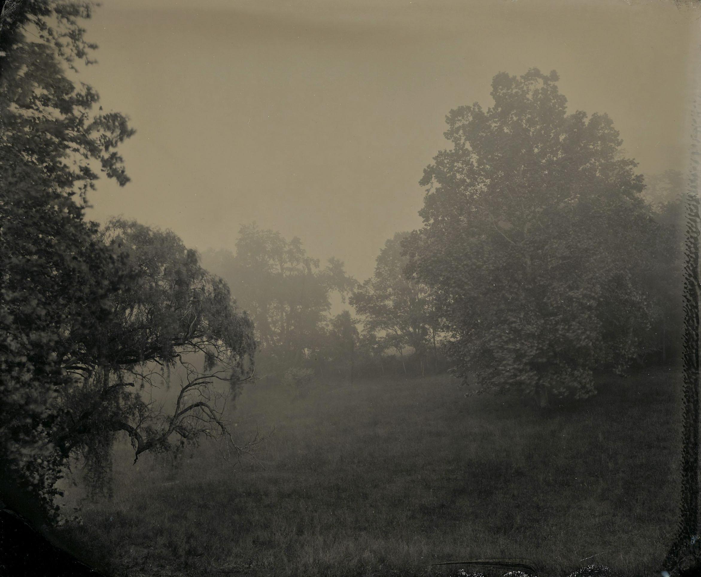 Receding Fog, Jump Mountain Road , Robert Alexander Williams