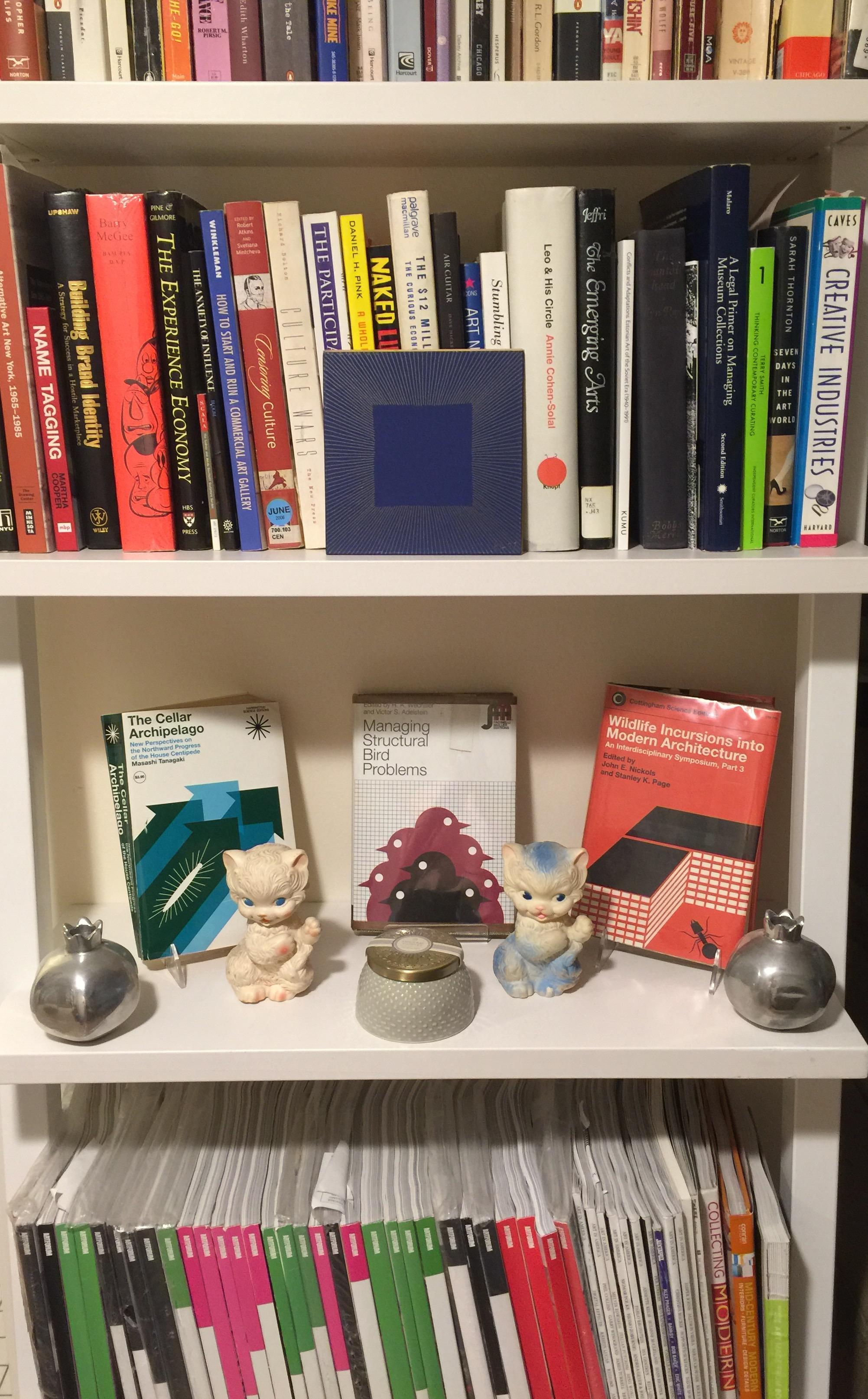 Elizabeth's academic art book library.
