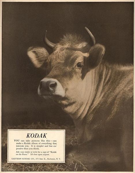 1917, Kodak
