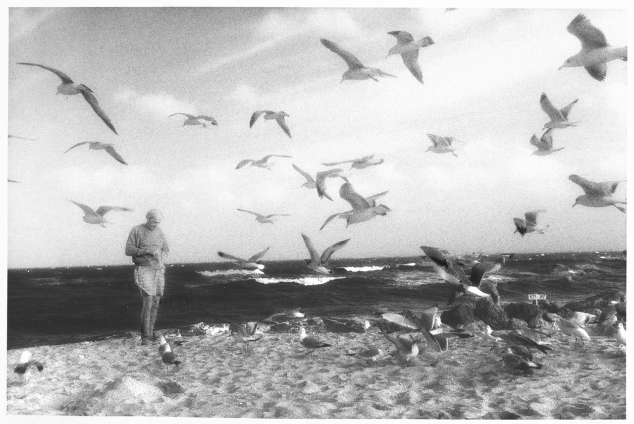 Man with Seagulls on Beach