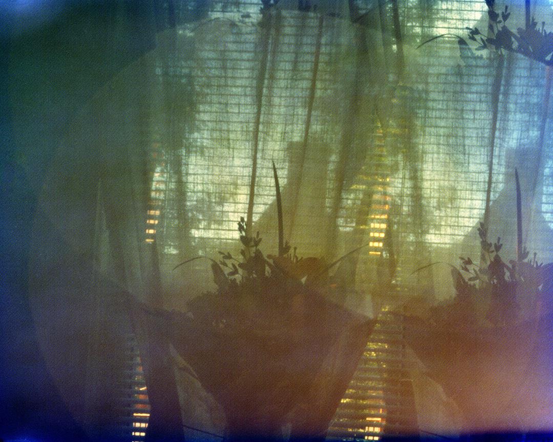 Flower Arrangement (11:45 - 11:58am). Photo made with Quadocular Camera